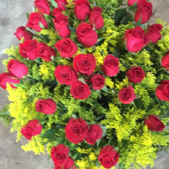 Floricultura em Araçatuba - Imagem 1