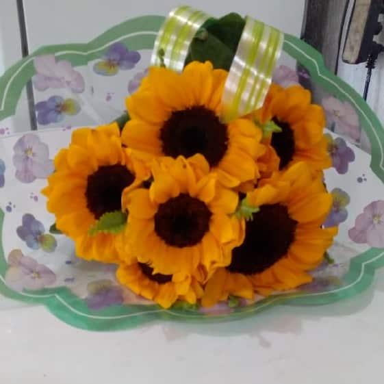Floricultura em Ribeirão Pires - Imagem 6