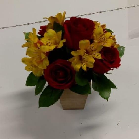 Floricultura em Diadema - Imagem 2