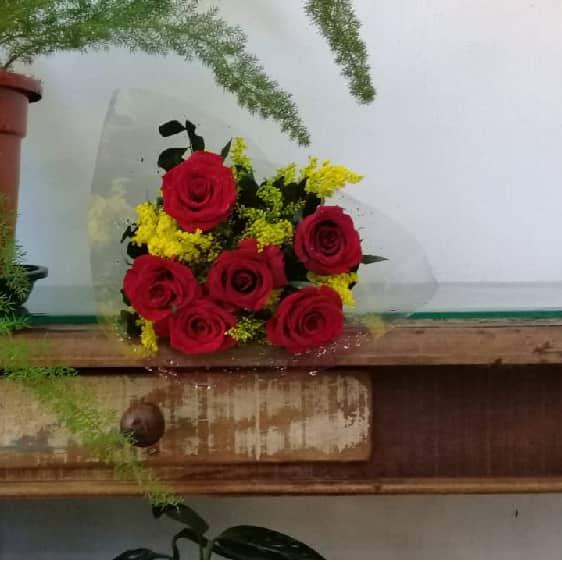 Floricultura em Vitória - Imagem 6