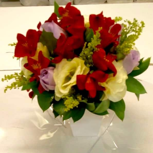 Floricultura em Barueri - Imagem 3