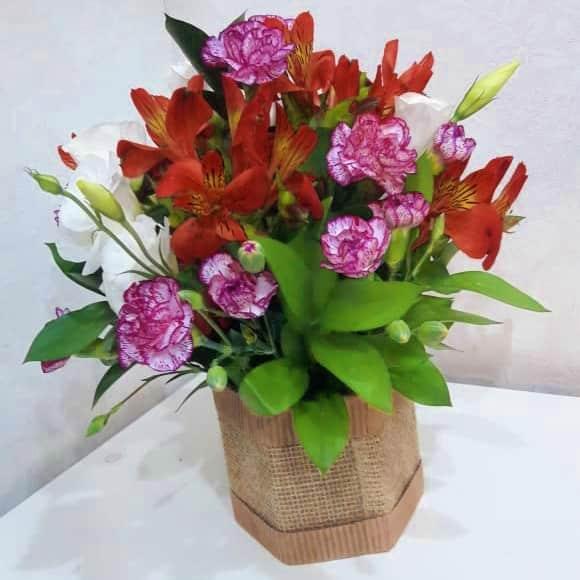 Floricultura em Mogi das Cruzes - Imagem 8