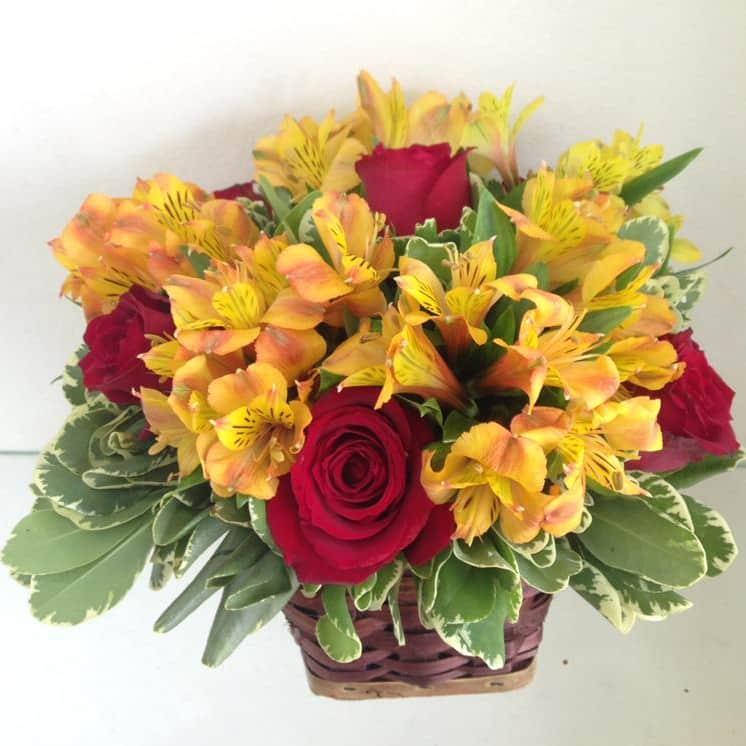 Floricultura RJ - Imagem 2