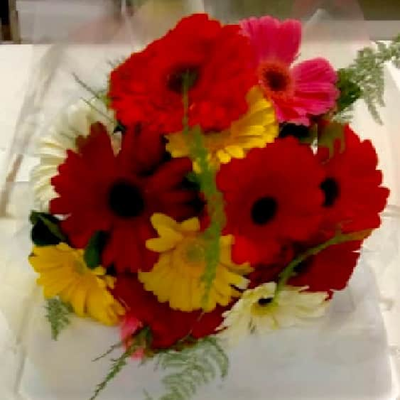 Floricultura em Barueri - Imagem 8