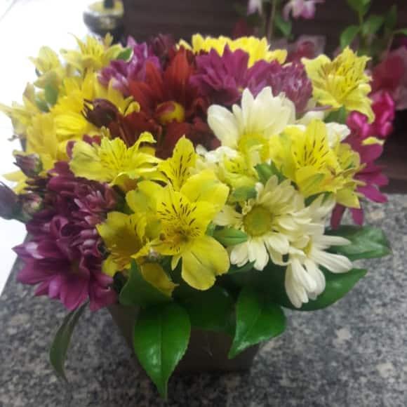 Flores e Vinhos - Imagem 3