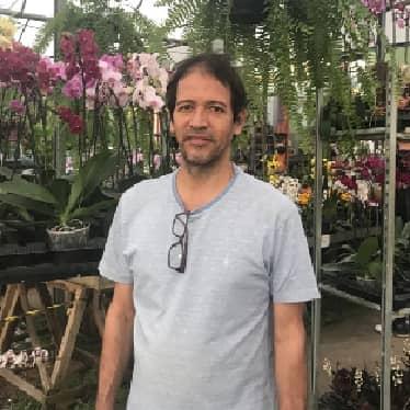 Mauro Cardoso